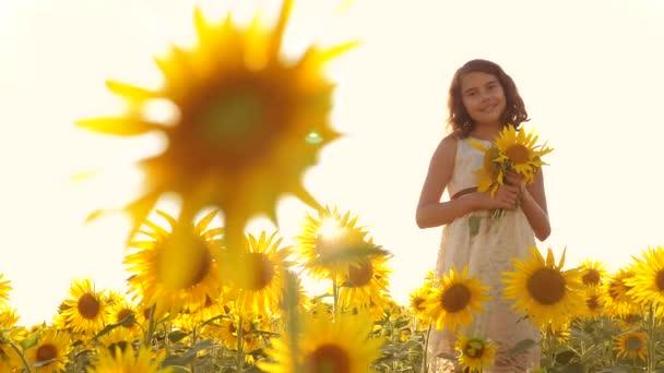Boldog kis lány tini szagú a területen napraforgó, nyáron. Slow motion videót. lány tinédzser állva a mezőben gazdaság virágok a naplemente napfény életmód napraforgók. lány gyermekkorban