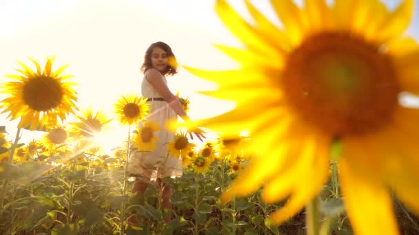 Happy little girl on the field of sunflowers sunlight in summer. beautiful sunset little girl in sunflowers. slow motion video. girl teenager lifestyle and sunflowers field concept agriculture