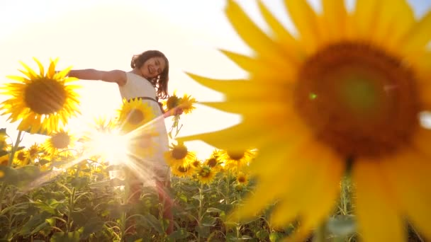 Cute child girl in yellow garden of sunflowers sunlight in summer. beautiful sunset little girl in sunflowers. slow motion video. girl teenager and sunflowers lifestyle field concept agriculture
