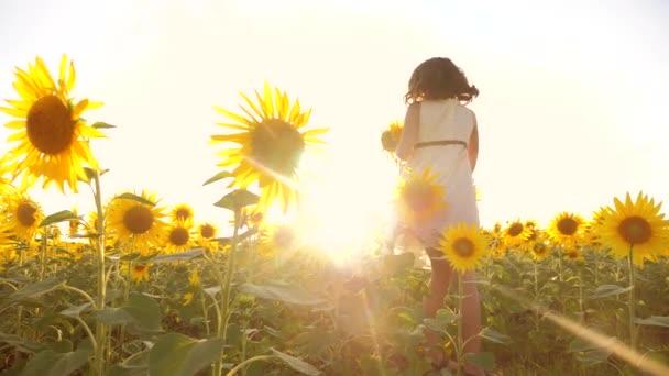 Roztomilé dítě dívka v žlutých zahradě životní styl slunečnice slunečního záření v létě. krásný západ slunce malá holčička v slunečnice. zpomalené video. Dívka teenager a slunečnice pole koncepce zemědělství