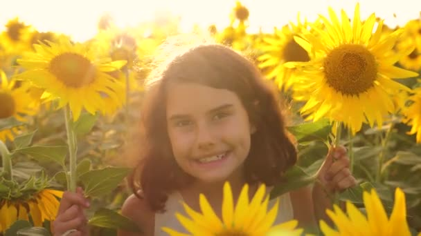 Happy portrait little girl on the field of sunflowers in summer. beautiful portrait lifestyle little girl in sunflowers. slow motion video. girl teenager and sunflowers field concept agriculture