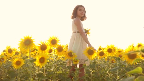 Happy little girl teen smelling a sunflower on the field in summer. slow motion video. girl teenager standing in lifestyle a field with sunflowers holding flowers at sunset sunlight . girl childhood