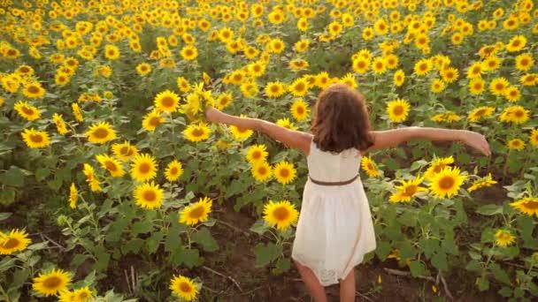 Šťastná holčička na pole slunečnic v létě. krásná holčička v slunečnice. zpomalené video životní styl. Dívka teenager a slunečnice pole koncepce zemědělství