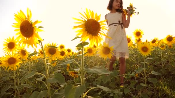Cute child girl lifestyle in yellow garden of sunflowers sunlight in summer. beautiful sunset little girl in sunflowers. slow motion video. girl teenager and sunflowers field concept agriculture