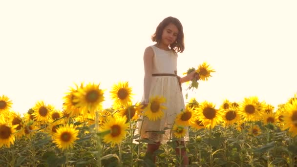 Šťastná holčička na pole slunečnic slunečního záření v létě. krásný západ slunce malá holčička v slunečnice. zpomalené video. Dívka teenager a slunečnice pole koncept životní styl zemědělství