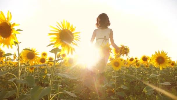 Roztomilé dítě dívka v žlutých zahradního životního stylu slunečnice slunečního záření v létě. krásný západ slunce malá holčička v slunečnice. zpomalené video. Dívka teenager a slunečnice pole koncepce zemědělství