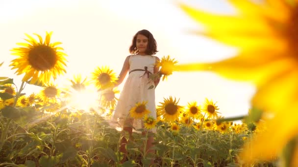 Cute child girl in yellow garden of sunflowers sunlight in summer. beautiful sunset little girl in sunflowers. slow motion video. girl teenager lifestyle and sunflowers field concept agriculture