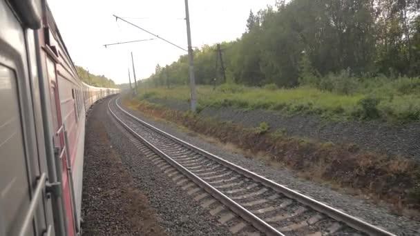 Vagony vlakem po kolejích poblíž lesní železnice venku. zpomalené video. Vlak s kočáry se pohybuje u lesa. koncepce Železniční vagóny a cestování cesty vlakem