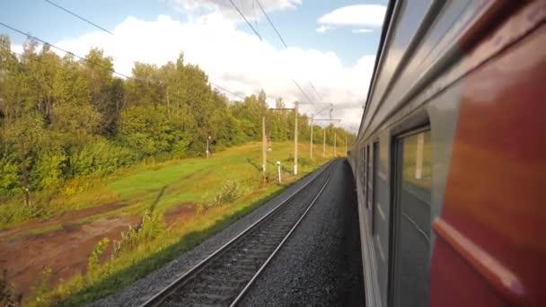 Vagony mimo vlak jezdit po kolejích poblíž lesní železnice. zpomalené video. Vlak s kočáry se pohybuje u lesa. koncepce železniční vlak auta životní styl a vlakem