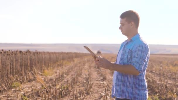 Mezőgazdasági termelő okos gazdálkodás működik ember olvas, vagy elemzés betakarítás napraforgó egy jelentést, a tábla-PC a mezőgazdasági területen vintage hangon a napfény. a kombájn életmód ekék mező