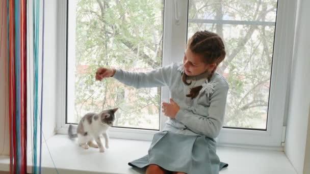 šťastné dítě dívka s její kočka sedí na okenním parapetu při západu slunce. malá holčička se hraje s šedou bílou kočku. dívka a kočka koncept životní styl