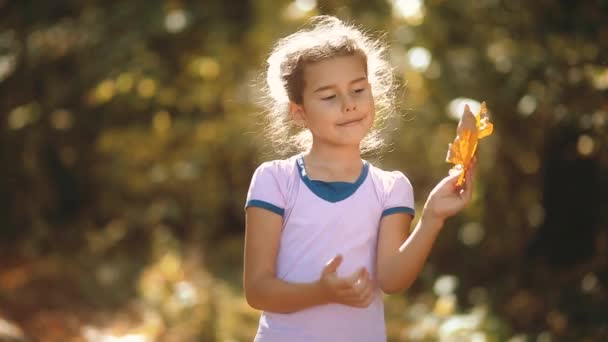 Little girl holds yellow leaves in the yellow autumn forest. Beautiful sunlight. little girl walks in autumn in the forest lifestyle nature landscape. children in nature concept