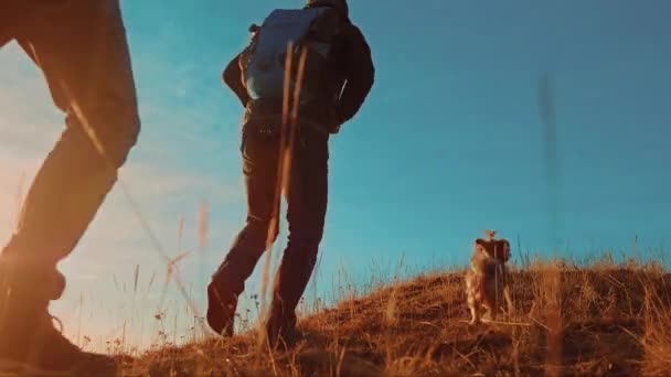teamwork. two tourists hikers men with backpacks at sunset go hiking trip. hikers adventure and the dog go lifestyle walking. travel mountains silhouette