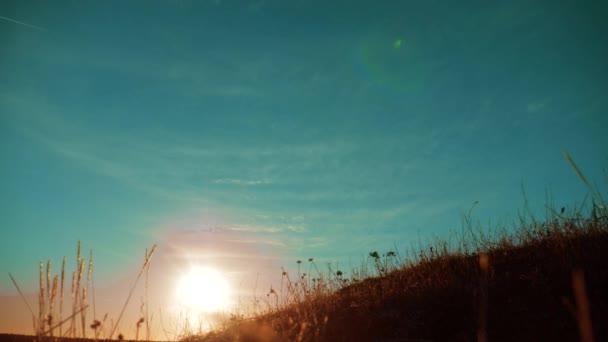 Őszi szezon silhouette táj száraz, barna fűvel és magas cserjék, gyógynövények nő buja arany réten, a szél, a kék ég. Sárga, száraz füves területen. Arany életmód nyári fű háttér