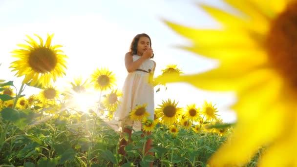 Boldog kis lány a területen napraforgó napfényt nyáron. gyönyörű naplemente kislány napraforgóban. lassú mozgás életmód videóinak. tinédzser lány és napraforgó mező mezőgazdasági koncepció