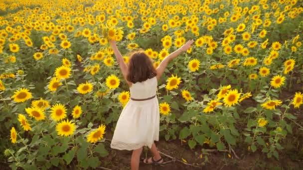 Boldog kis lány a területen napraforgó, nyáron. gyönyörű kis lány életmód napraforgóban. Slow motion videót. tinédzser lány és napraforgó mező mezőgazdasági koncepció