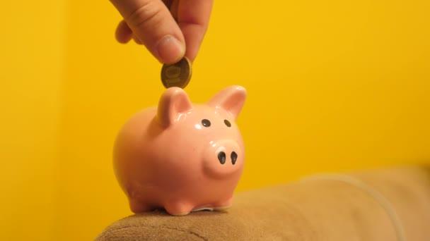 obchodní koncept prasátko. Ruka je uvedení minci v prasátko na žlutém pozadí životního stylu. Úspora peněz je investice do budoucna. Bankovní investice a finanční koncept pro váš