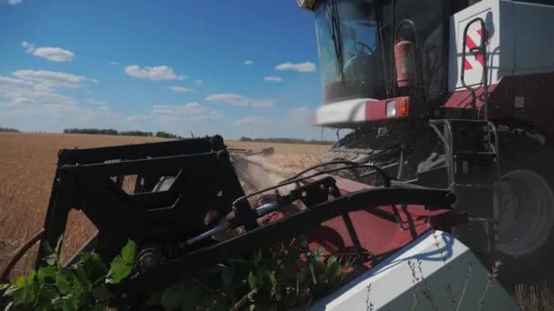 Combina lo stile di vita del grano di taglio Combine . video al rallentatore. concetto di raccolta dellagricoltura. Combinare la raccolta in un campo di grano dorato