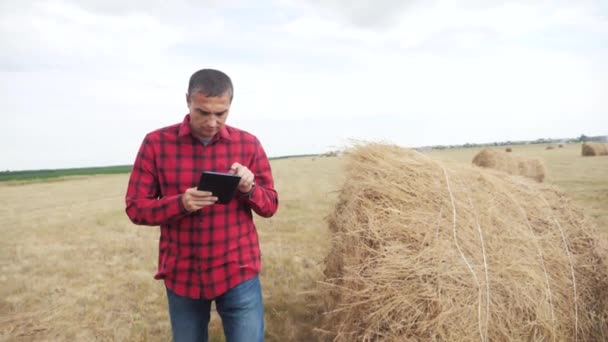 smart farming agriculture concept. man farmer studying a lifestyle haystack in a field on digital tablet. slow motion video. male agronomist botanist farmer working in the field
