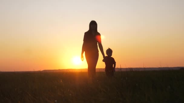 happy family a mom and daughter sunset silhouette in the park walking go slow motion. little girl and woman mom hold hand walk go the field outdoors lifestyle . happy family mom takes care of daughter