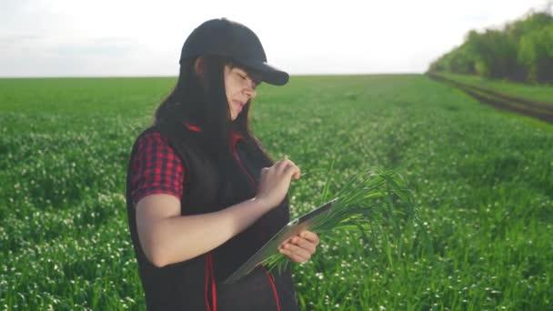 Landwirtschaft. Mädchenporträt in einer Mütze, die die Ernte Smart Farming mit digitalem Tablet studiert. Roter Lebensstil Bauer Hals Arbeiter arbeiten in einem Feld Öko-Ernte grünen Weizen