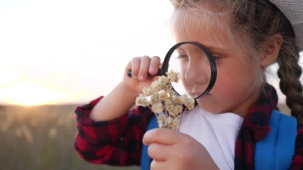 kid tourist examines the plant with a magnifying glass. travel tourism adventure concept. little kid boyscout girl with a backpack studies nature plant looks through lifestyle a magnifying glass