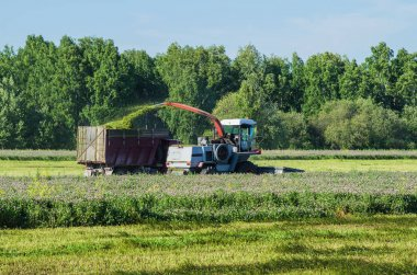 Harvesting in the field