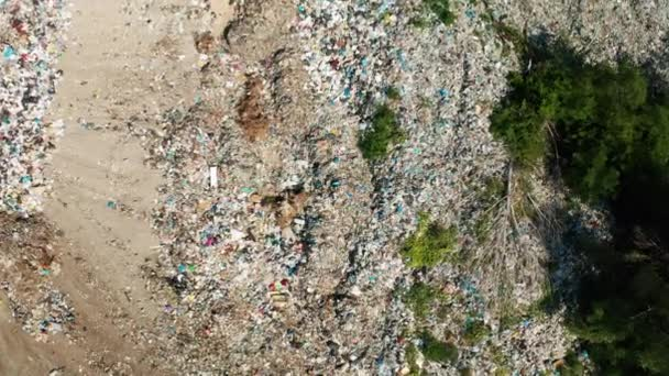 Aerial view of dump in forest. Pollution concept, top view.