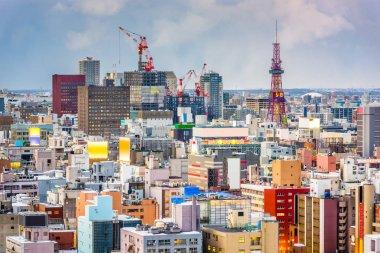 Sapporo, Japan downtown city skyline.