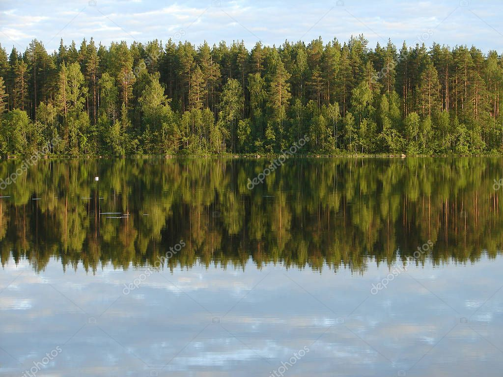 Reflection of the forest in the lake