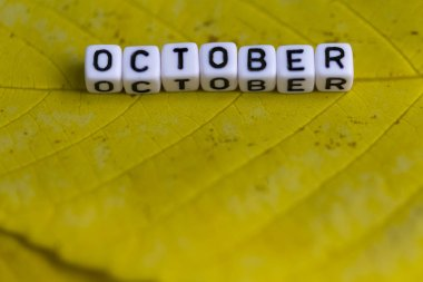 the inscription October of white cubes on a yellow sheet of wood
