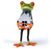 Fun frog with house  - 3D Illustration