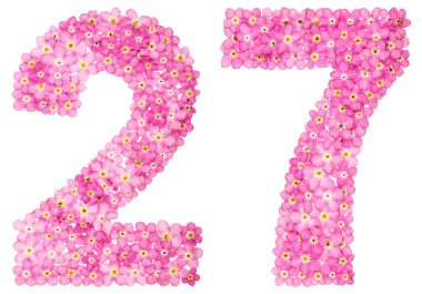 Arabic numeral 27, twenty seven, from pink forget-me-not flowers, isolated on white background