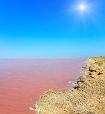 Sunshiny pink extremely salty Syvash Lake, colored by microalgae with crystalline salt depositions. Also known as the Putrid Sea or Rotten Sea. Ukraine, Kherson Region, near Crimea and Arabat Spit.