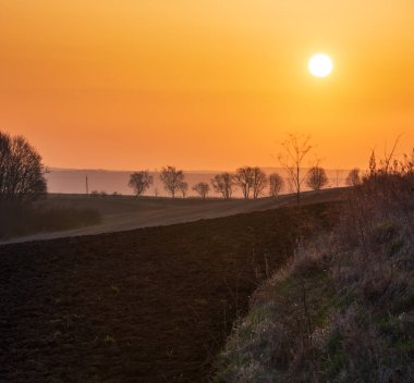 Spring sunrise rural country landscape with plowed agricultural fields on hills and trees on horizon.