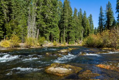 Section of the Rouge River in southern Oregon flowing thru lava rocks and tubes with a few golden autumn leaves