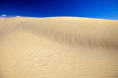 sand and wind pattern on dune surface, sand flying in strong wind, Dunes of Maspalomas, Gran Canaria