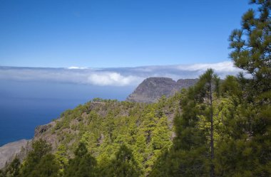Gran Canaria,  nature park pine forest Tamadaba, view towards Faneque, the tallest over-the-sea cliff of Europe, little rainbow