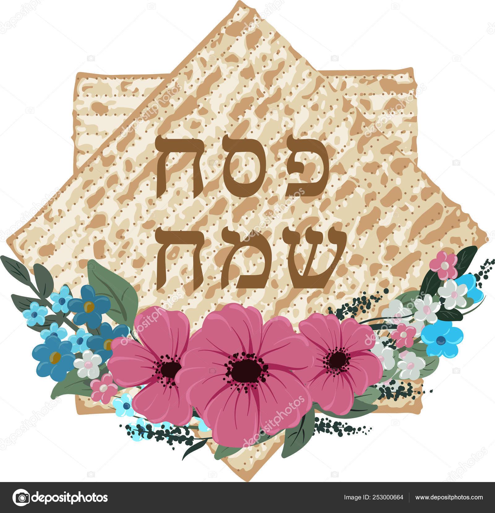 Vetor Feliz Pascoa Judaica Lettering E Matza Vetores De Stock C Amekamura 253000664