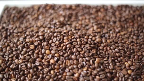Braune geröstete Kaffeebohnen sind eine Mischung aus Arabica und Robusta. ausgewählter Schwerpunkt.