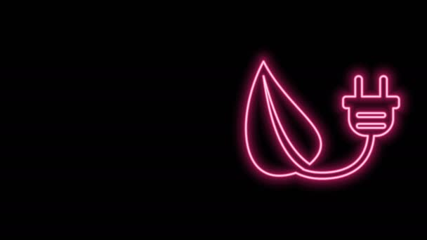 Glowing neon line Electric saving plug in leaf icon isolated on black background. Save energy electricity icon. Environmental protection icon. Bio energy. 4K Video motion graphic animation