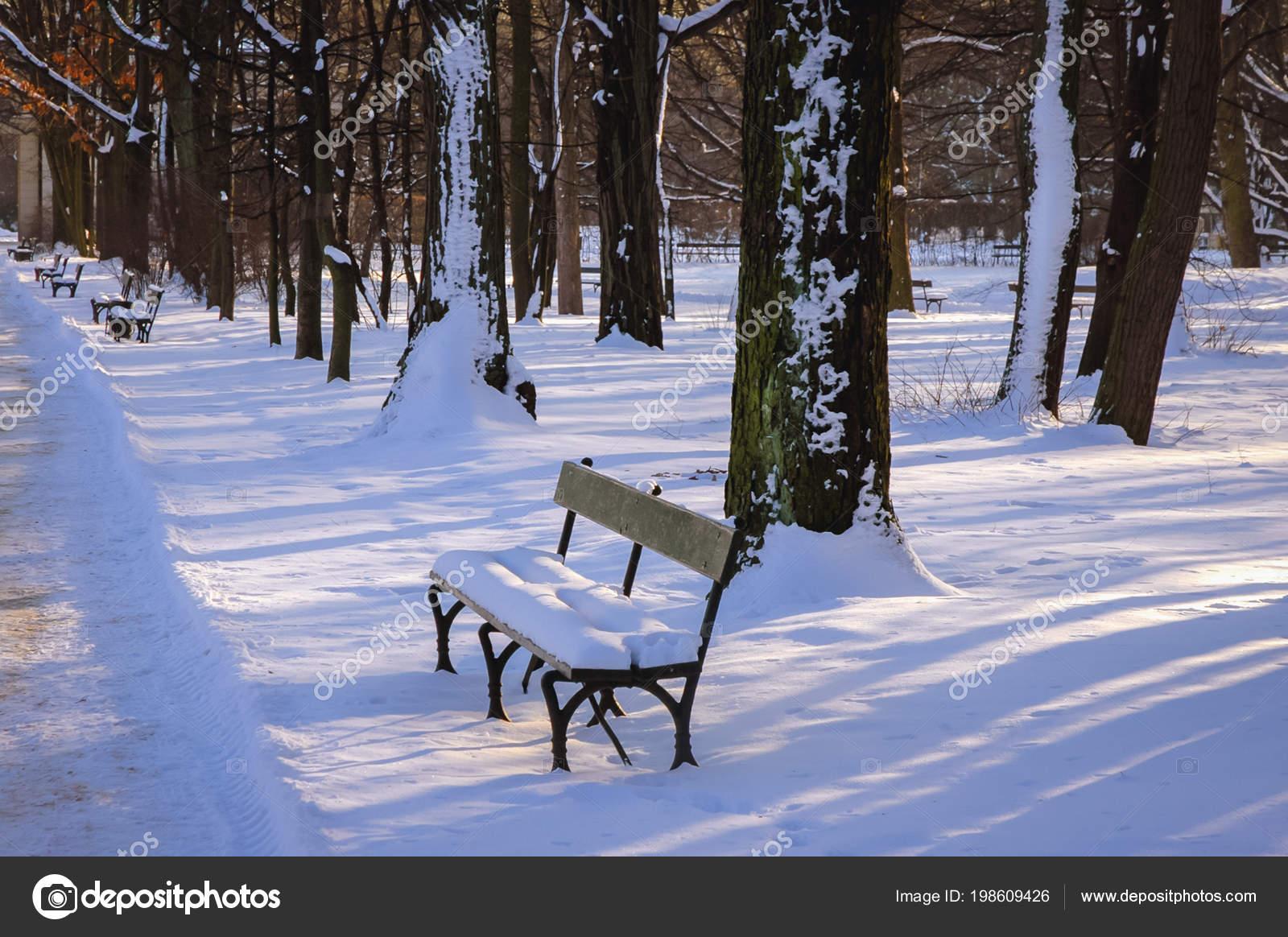 Zima łazienki Królewskie Duży Park Centrum Warszawy Polska