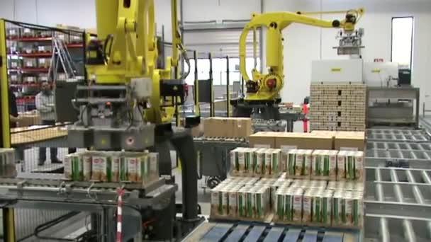 Automatický Robot paletizace systém