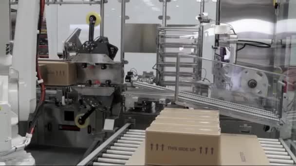 Automata Robot palettázó System9