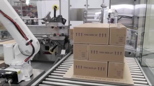 Automata Robot palettázó System12