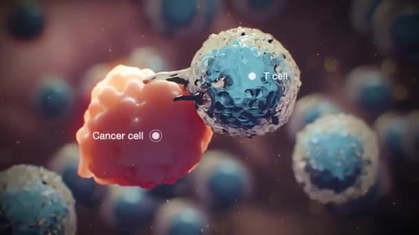 neporušené buňky zničit nádorové buňky