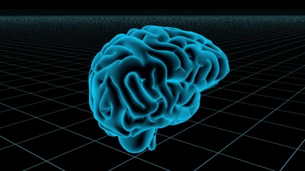 3D Animated Seamless Loop Of A Human Brain