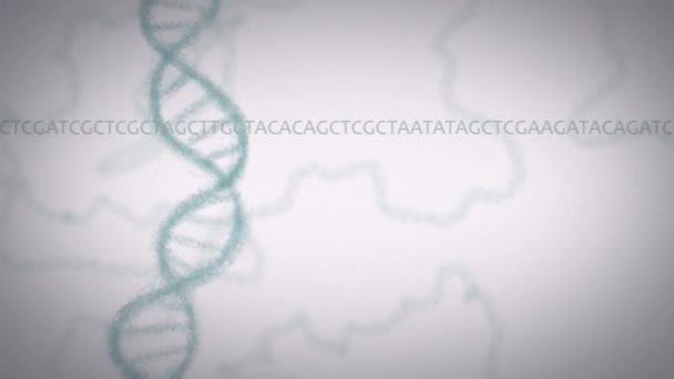 Dna animation The coding sequence of the mRNA determines the amino acid sequence