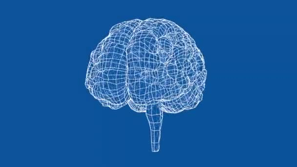 Lidský mozek koncepci plán styl