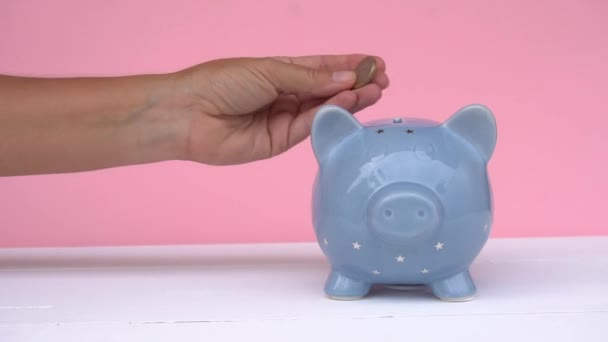 Prasátko, koncepce úspor